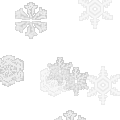 雪の結晶が広がる打ち上げ花火